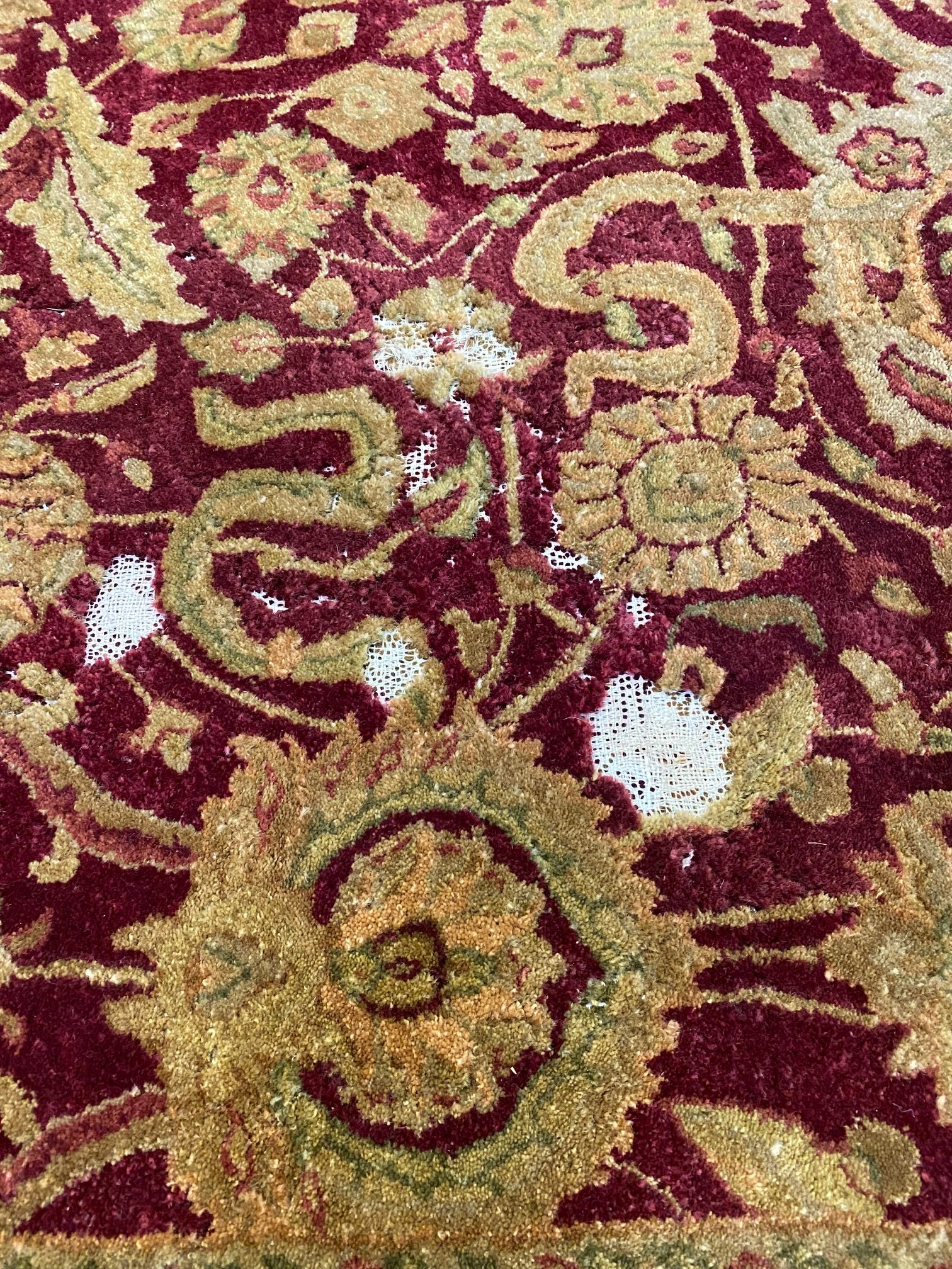 Rug Care - Moth Damage